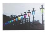 LED Picture Light 街灯