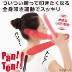 Pan!Ton!(パンッ!トンッ!)