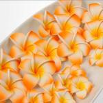 プルメリア(スポンジ造花)オレンジ