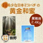 プロ必見/業務用/食品原料/非加熱/野生日本みつばちの蜂蜜/和歌山県2.4kg
