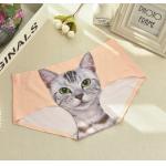 猫パンツ  猫雑貨 猫関連  アンダーウェア/レディース/パンツ/下着/ショーツ/リックスターター/キャット/猫アンダーウェア レディース パンツ 下着 ショーツ リックスターター プッシー キャット アンダーウェア Dangerously Sweet One 猫