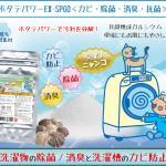 べジフルスムージダイエット健康補助食品300g(計量スプーン付)