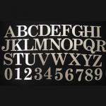 H20?ステンレス製アルファベット切り文字(明朝体大文字)【DIYに最適!簡単に最高級表札が完成します!】