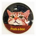猫マグネット Cat peek-a-boo