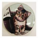 猫マグネット Cat  piano