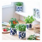 Grow&Fresh グロー&フレッシュ 野菜栽培キット GD-811