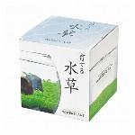育てる水草 水草栽培キット Sサイズ GD-812