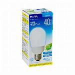 電球形蛍光ランプ 60W形 E26