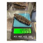 北海道乾燥なまこ35g-40g  1kg
